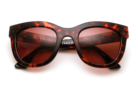 Wonderland x SCF - Colony Sunglasses (Tortoise/Bronze)