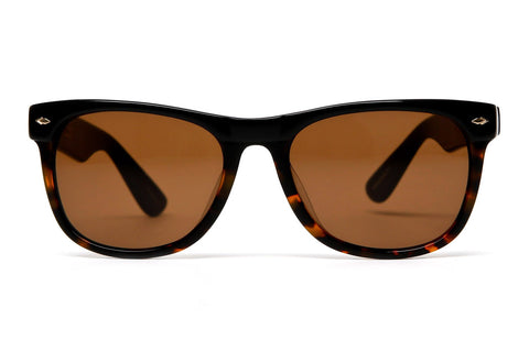 The Village Sunglasses (Black Tortoise/Bronze)