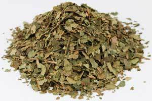 Witch Hazel Leaf cut 1oz (Hamamelis virginiana)