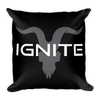 Black Pillow with Grey Logo