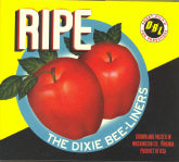 DIXIE BEE-LINERS 'Ripe'