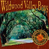 WILDWOOD VALLEY BOYS 'When I Get Back To Georgia'