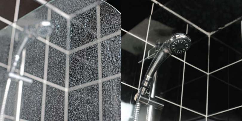 limescale shower head