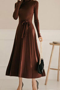 Casual Sexy High Collar Long Style Knitted Sweater Shown Thin  Sweater Dress