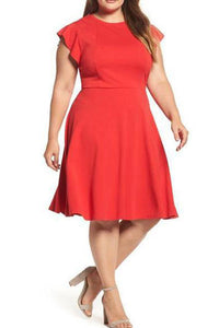 Plus Size Round Collar Pure Color Skater Dress