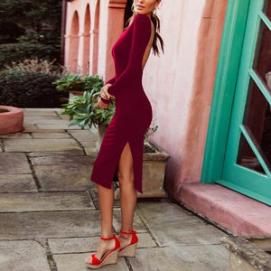 Elegant Sexy Fashion Slim Plain Backless Long Sleeve Fork Bodycon Dress