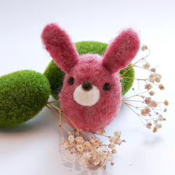 Honey Canada - DIY Felting Kit - Bunny
