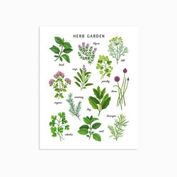 Linden Paper Co. - Prints - Herb Garden Light