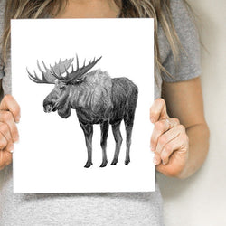 Pen on Paper - Prints - Moose