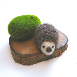 Honey Canada - DIY Felting Kit - Hedgehog