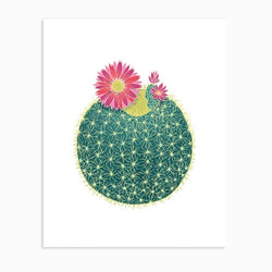 Linden Paper Co. - Prints - Barrel Cactus
