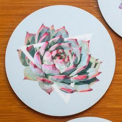 Justindeed - Coaster Set - Succulents