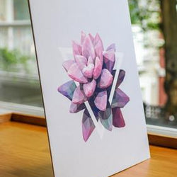 Justindeed - Prints - Pink Succulent