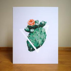 Justindeed - Prints - Cactus