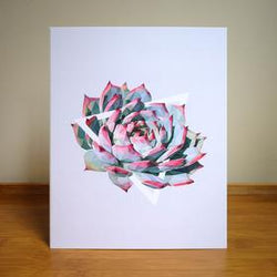 Justindeed - Prints - Red Tip Succulent