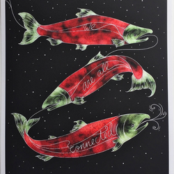 Sarah Clement – Print – Salmon Connected