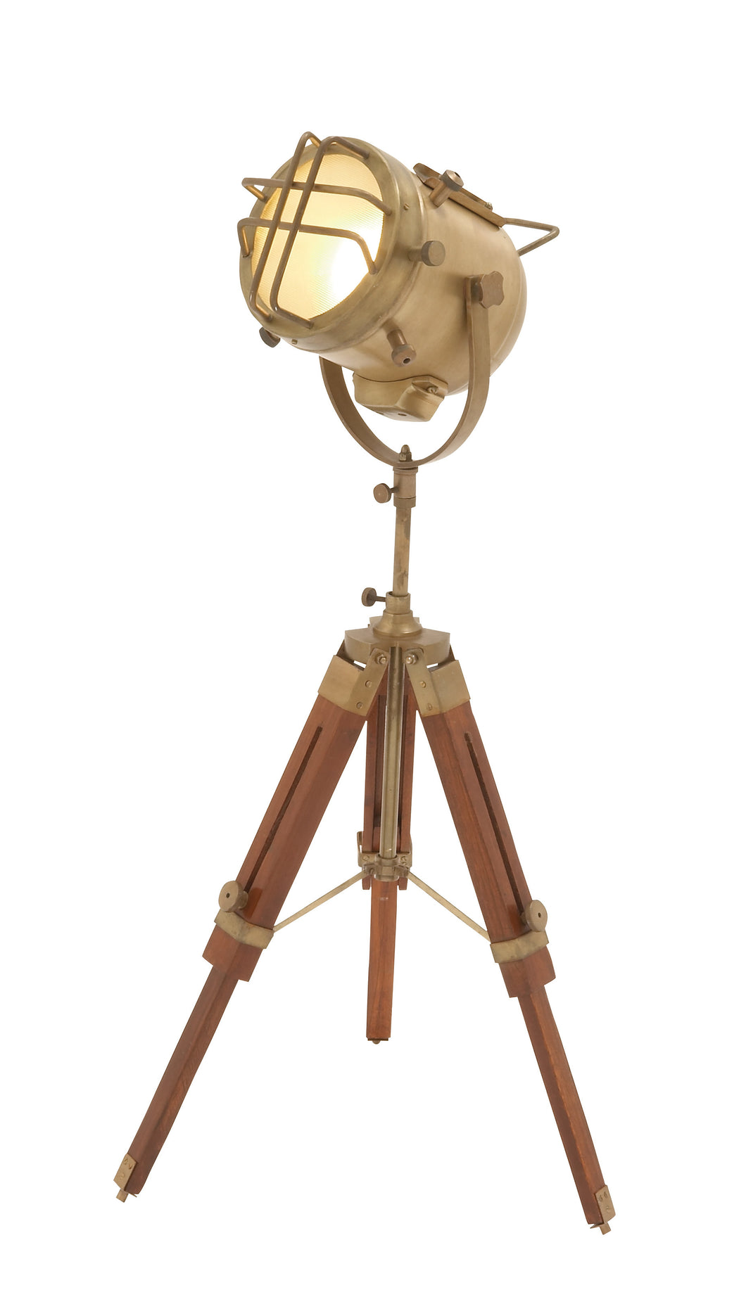 24482 Brass Wood Spot Light