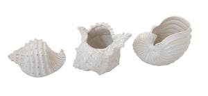 Ceramic Seashelldecor Set Of 3