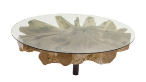 Enticing Teak Coffee Table With Glass