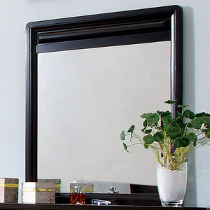Yorkville Transitional Mirror, Espresso