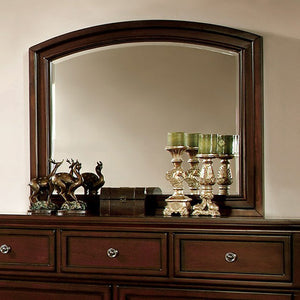 Northville Transitional Style Mirror Dark Cherry