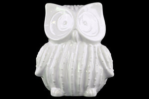 Truth Seeker Standing Owl Figurine- Large- White- Benzara