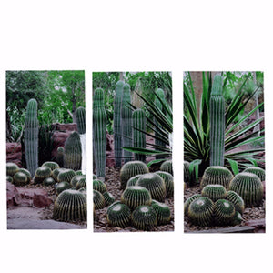 Desert Green Prints - Set of 3