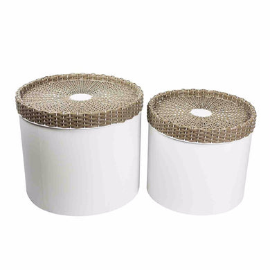 Voguish Set Of Two Metal Storage Canisters, Brown And White