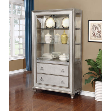 Traditional Style Metal Curio Cabinet, Silver