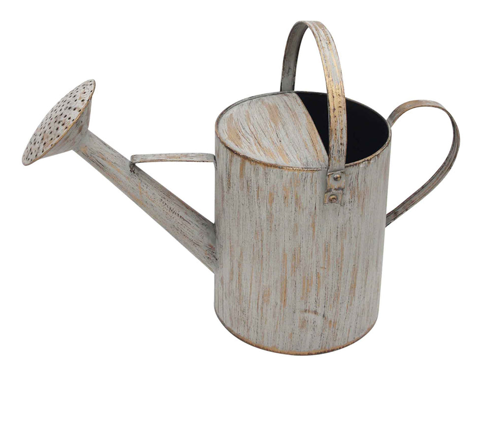 Rustically Charmed  Metal Watering Can, Brown