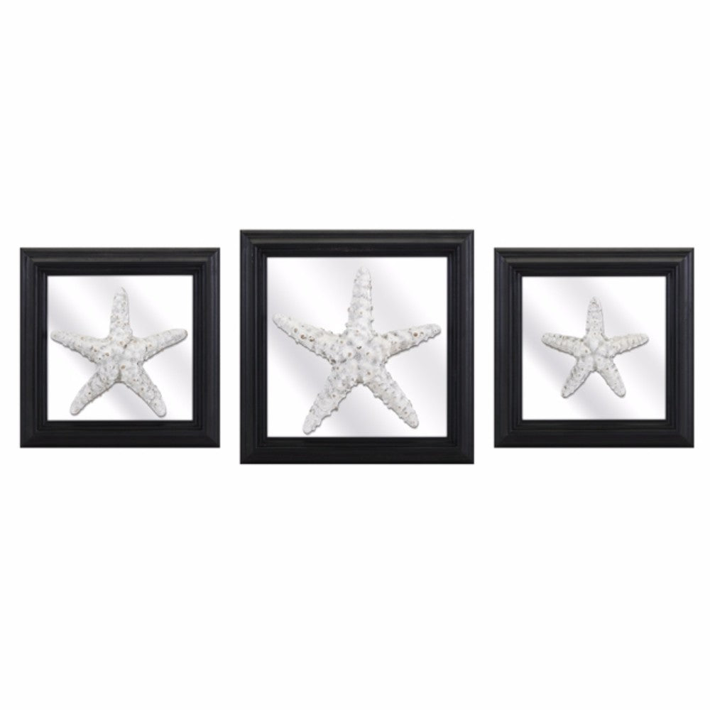 Jet Starfish And Mirror Wall Decors - Set Of 3