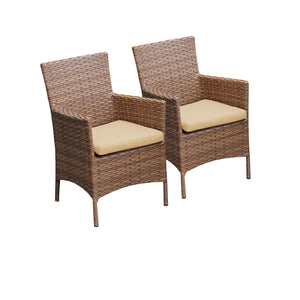 2 Laguna Dining Chairs With Arms