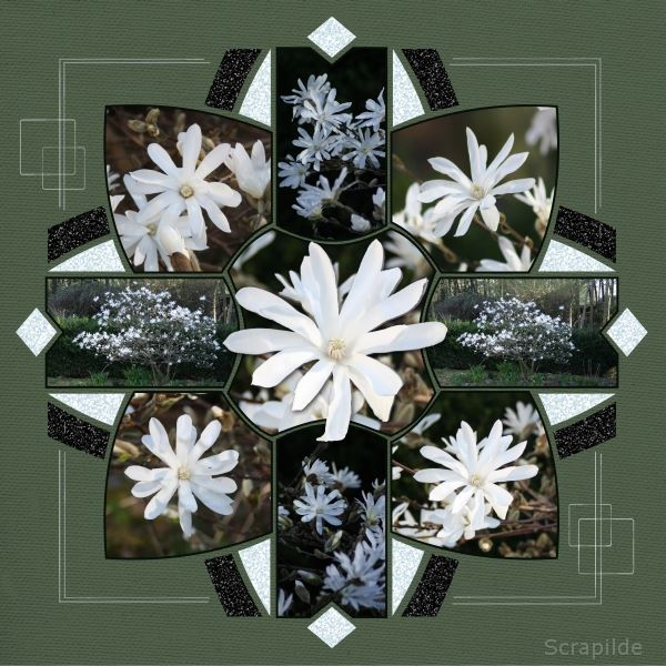 Kaleidoscope 5 Digital Scrapbook Template