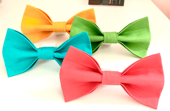 Summer Fun - Pet Bow Tie - Hook and Loop Closire
