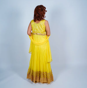 Yellow with Gold Trim Embroidery Anarkali