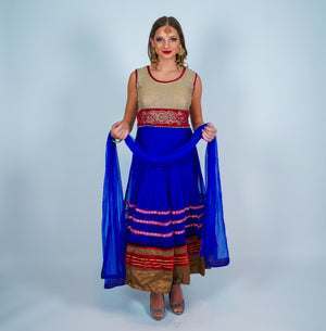 Blue Pink with Gold Zari work Anarkali