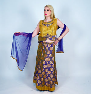 Purple With Gold Trim Border Silk Brocade Lehenga