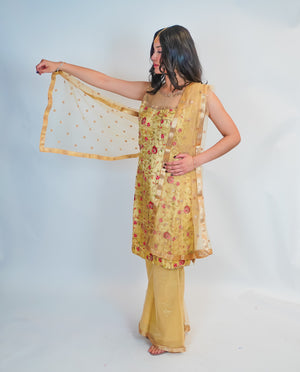 Dark Gold with Rose Embroidery Salwar Kameez