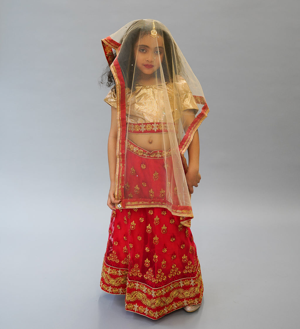 Silk and Net Embroidered Red And Gold Children Lehenga