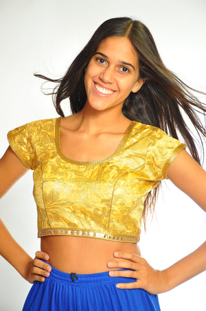 Fancy Brocade Gold Crop Top