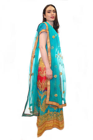 Rainbow Silk with Gold Embroidered Lehenga
