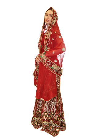 Elegantly crafted Red Jeweled Bridal Lehenga