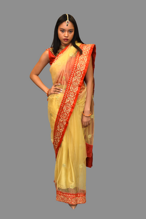Silk Net Gold Embroidered With Contrast Red Border Saree