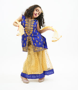 Silk Gold With Egyptian Blue Trim Lehenga Skirt