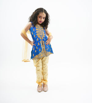 Silk Light Cobalt Blue Embroidered Girl's Salwar Suit