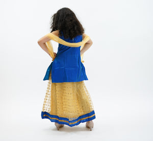 Silk Gold With Light Cobalt Blue Trim Lehenga Skirt