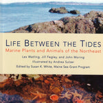 Life Between the Tides: Marine Plants & Animals of the Northeast · Field Guide