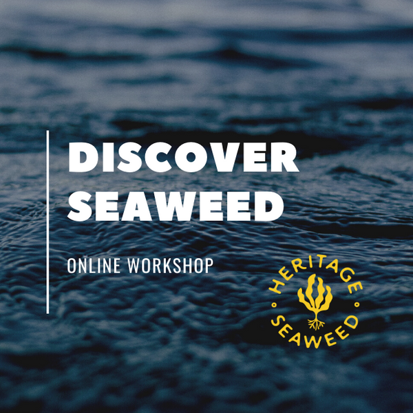 Discover Seaweed: Edible Seaweed 101 Online Workshop