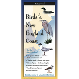 Birds of the New England Coast - Multi-Fold Field Guide