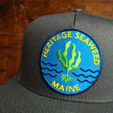 Heritage Seaweed Adjustable Snapback Hat (Slate)